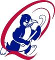Queechy Penguins Hockey Club